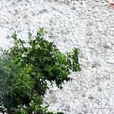 Дождь в городе Арсеньев