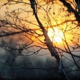 Арсеньев. Утро. Фото Хоменко Алексей