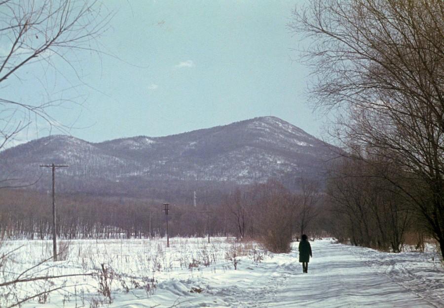 Арсеньев. Начало 70-х. Вид сопки ещё без телевышки и горнолыжной трассы.