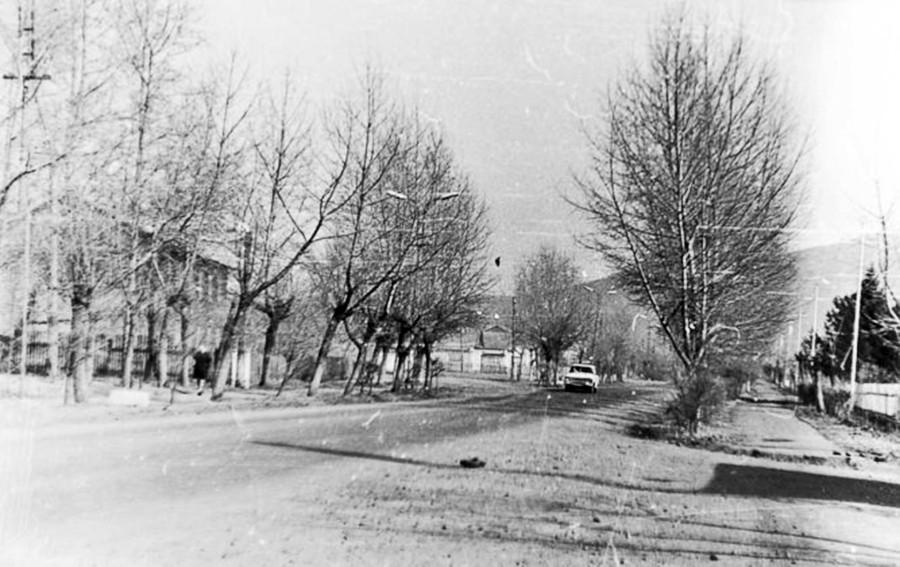 Арсеньев. Улица Жуковского 1978 год