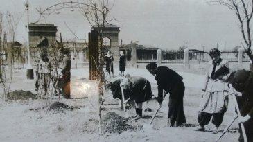 Благоустройство города Арсеньев